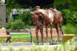 War Horse  - Photo Roy Romsey 18 .jpg