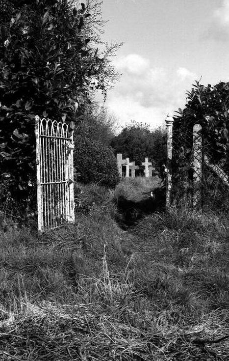Mystery Cemetery 9239