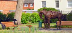War Horse  - Photo Roy Romsey 20 .jpg