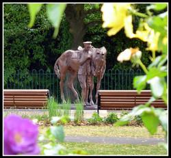 War Horse  - Photo Roy Romsey 09 .jpg
