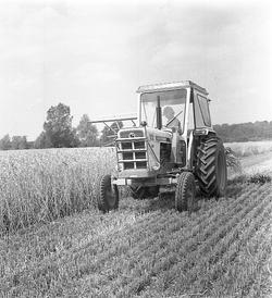 Tractor Photo 60946