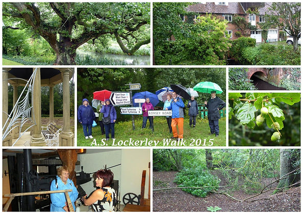 Romsey Local History Society embarked on an exploratory walk of anglo-saxon of sites in the area of Lockerly Hampshire.