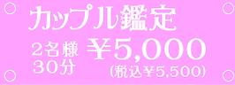 カップル鑑定5000円(税込5500円)