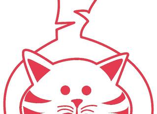 The Moggery CAT & KITTEN REHOMING CENTRE