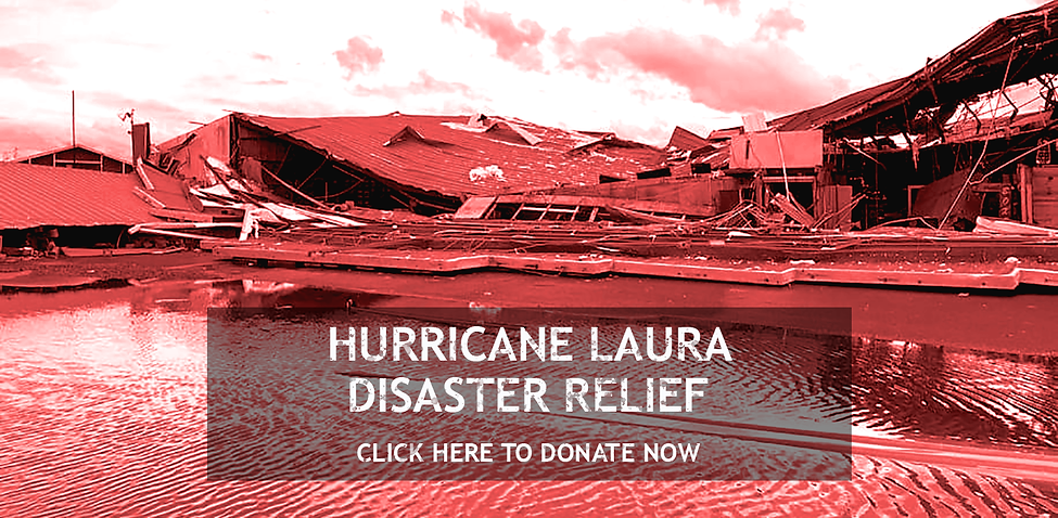 Laura-donations.png