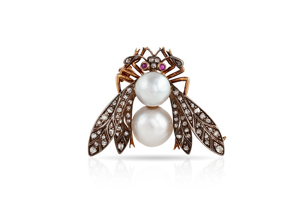 Bug Brooch Front View
