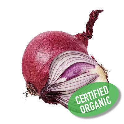 Red Onion - Organic 紅洋蔥 (500g)