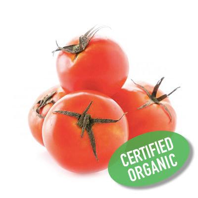 Round Tomatoes - Organic 蕃茄 (400g)