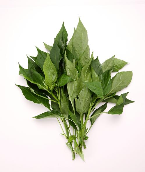 sweet potato sprouts - organic 有機蕃薯苗(300 g)
