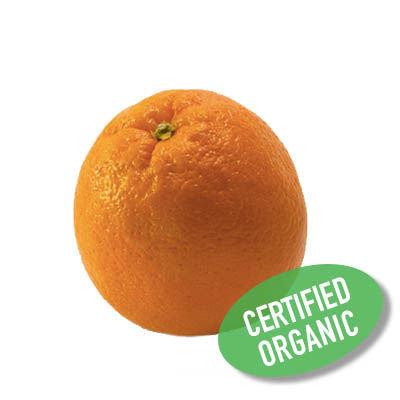 Orange - Organic 橙 (500g)