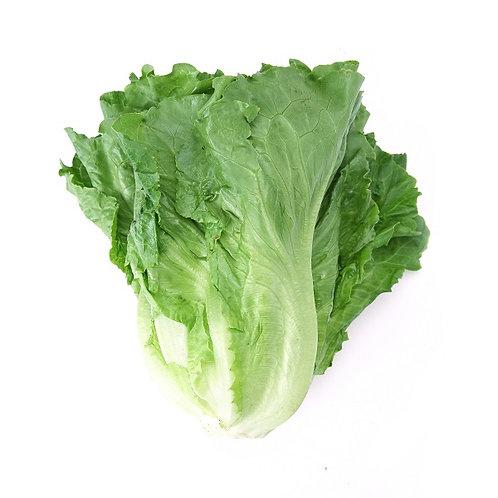 lettuce - organic 有機生菜(300 g)