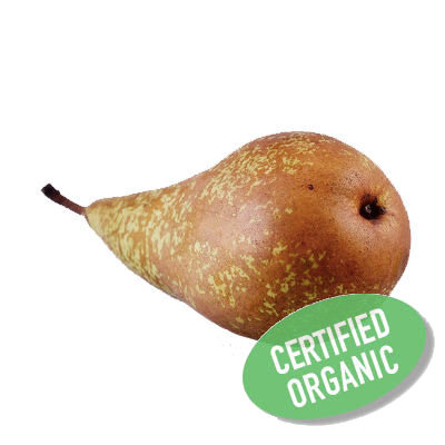 Conference Pear- Organic 啤梨 (400g)