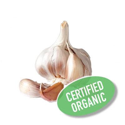 Garlic - Organic 蒜頭 (200g)