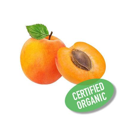Spanish Apricot - Organic 西班牙杏桃 (400g)