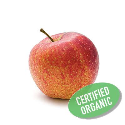 Apple- Organic 蘋果 (500g)