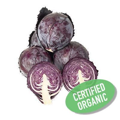 Red Cabbage - Organic 紫椰菜 (800g)