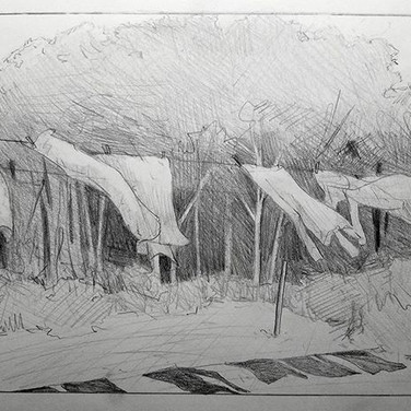 Sketch for a painting