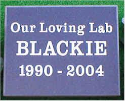 Pet Memorial 7 (Blackie)