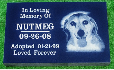Pet Memorial 6 (Nutmeg)