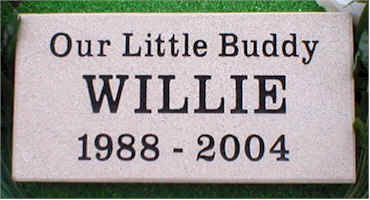 Pet Memorial 12 (Willie)