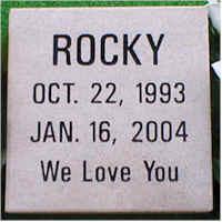 Pet Memorial 10 (Rocky)