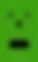 icons_videoselfie_verde.png