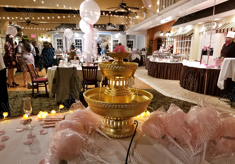 «Champagne fountain only for $129.99»