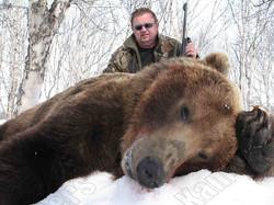 Kamchatka brown bear trophy