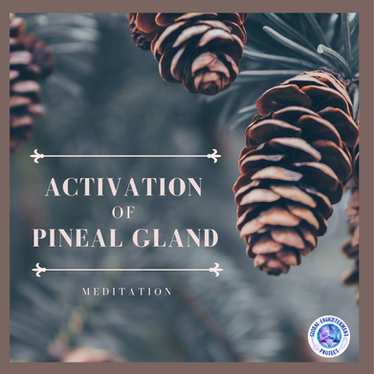 Our Featured Monthly Meditation:        The Clearing and Activation of the   Pineal Gland