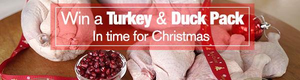 contest-turkey-xmas-ver1-600x160.jpg
