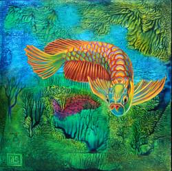 Fancy Fish 2020