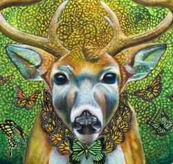 LIBAWS_sacred_deer_detail