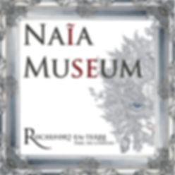 logo NAIA 45 CM.jpg