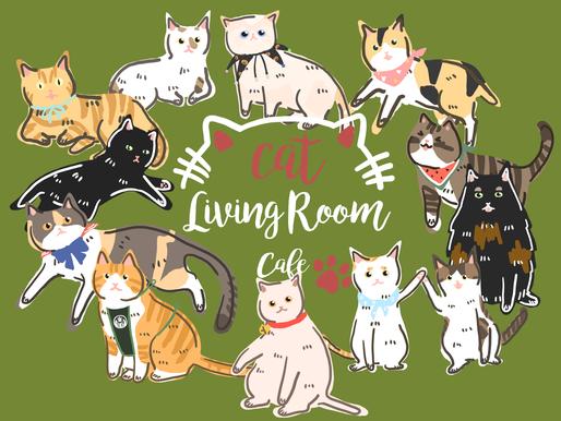 中和‧南勢角站|貓客廳 Cat Living Room Cafe|成貓送養主題餐廳|推廣乾淨餵食,TNR人人皆可。