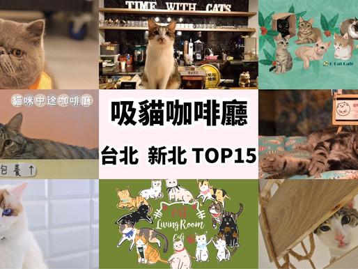 吸貓有理。嗜吸無罪!台北。新北精選15家人氣貓咪咖啡廳。資深貓奴必訪攻略!-Paw Dreamer