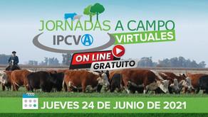 Nueva jornada a campo virtual del IPCVA