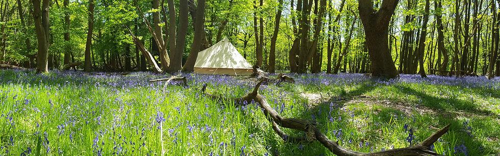 the-vintage-tent-company.jpg