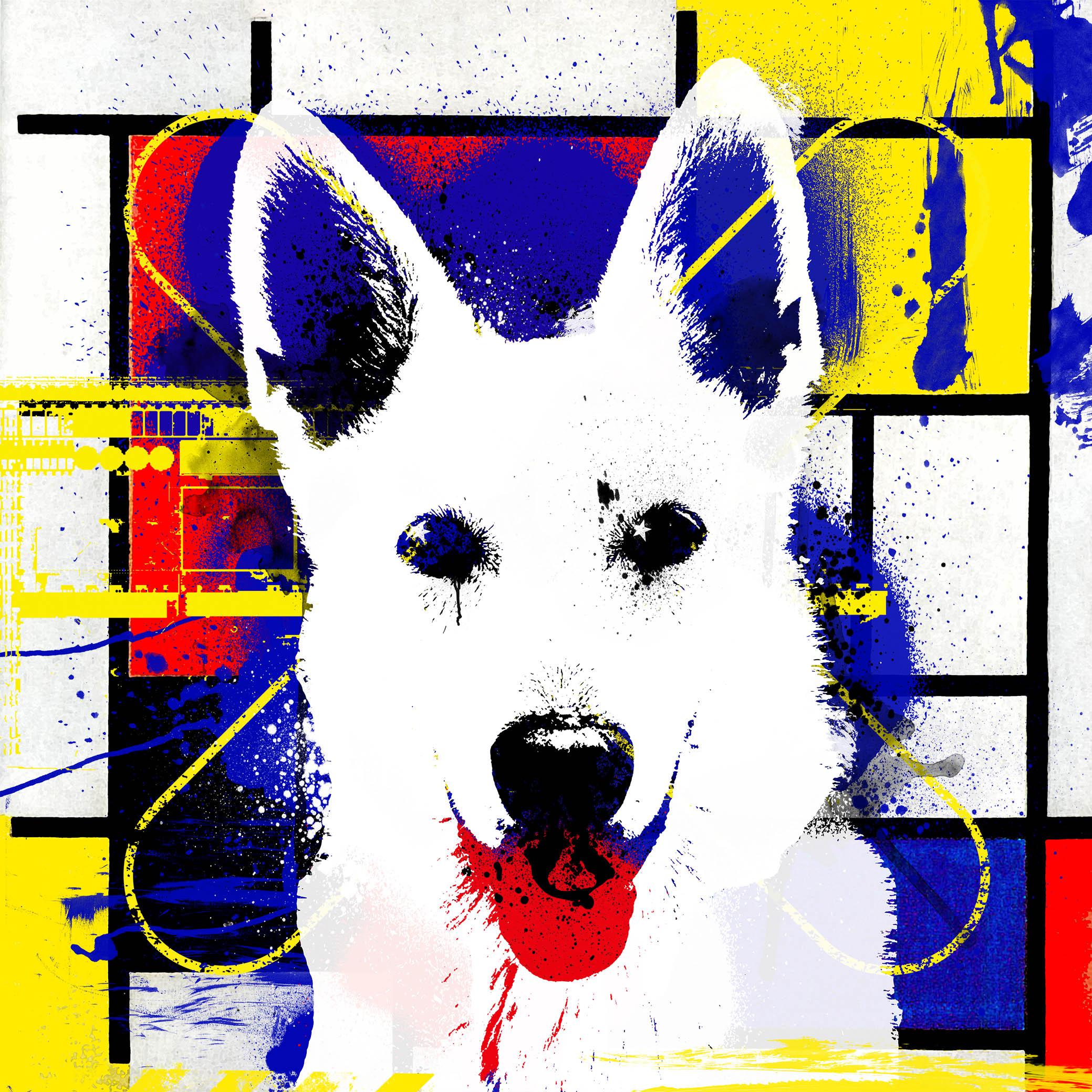 Portret van je hond