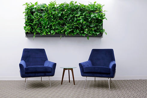 Soft Seating in Reception Area