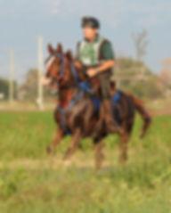 DSC_6699 - crop 8x10 - SC photo.jpg