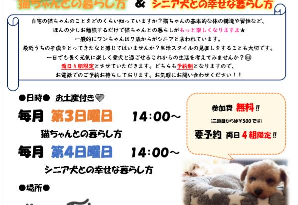 6月の店内イベント♡