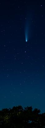 Star light.jpg