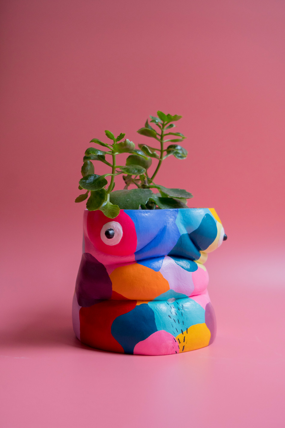 Pot Belly by Meg Garrod X Sam Dawood
