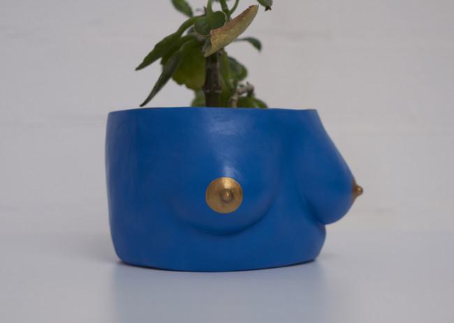Blue Plant-Tits