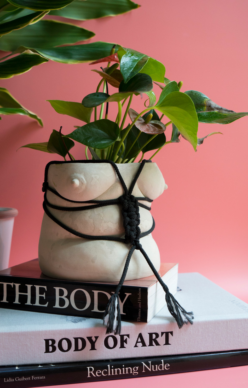 Shibari Pot Belly