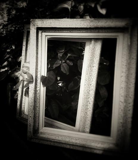 © Valérie Salvo Instants jardins