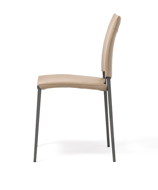 Dining Chair - Sally 2.jpeg