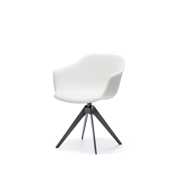 Dining Chair - Indy .jpeg