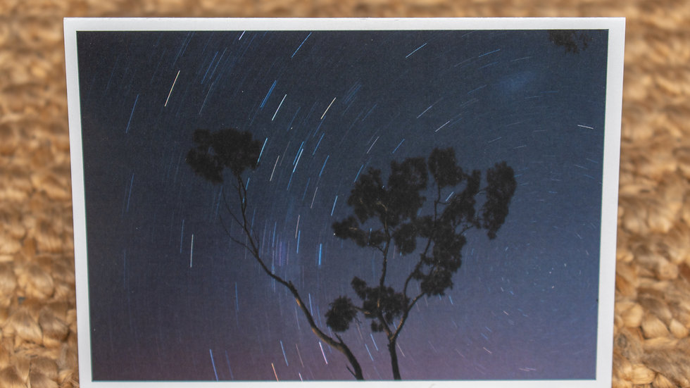 Star Trails & The Ghost Gum