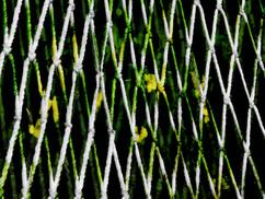 Flowers Rope